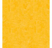 Мармолеум Forbo MARMOLEUM Click 9,8 мм (300*300) Lemon Zest